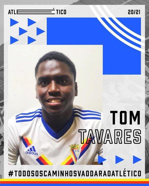 Tom Tavares