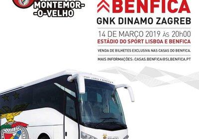 Excursão: Benfica - Dinamo Zagrev