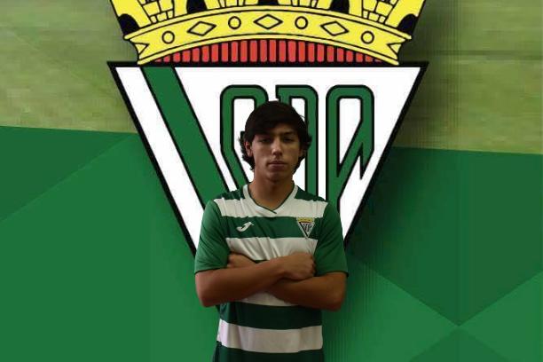 João Ascenso