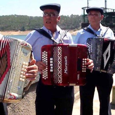 Grupo Concertinas