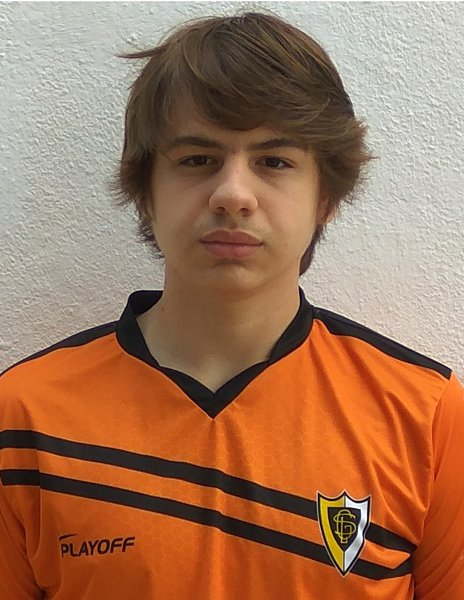 Bernardo Lopes