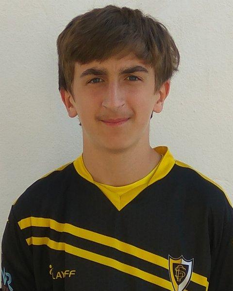 Henrique Costa